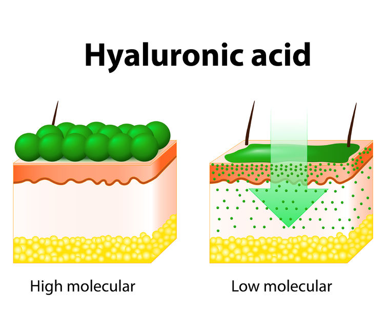 68199460 - hyaluronic acid. hyaluronic acid in skin-care products.